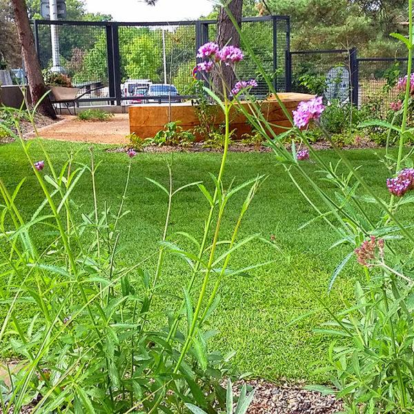 Ruzyně, realizace zahrady